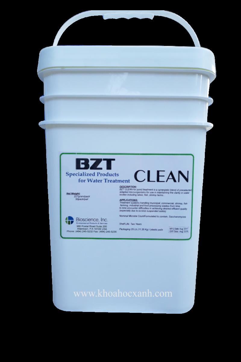 BZT Clean