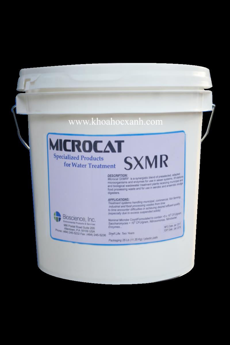 Vi sinh Mỹ Microcat sxmr